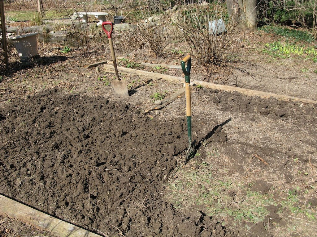 Digging the new vegetable beds